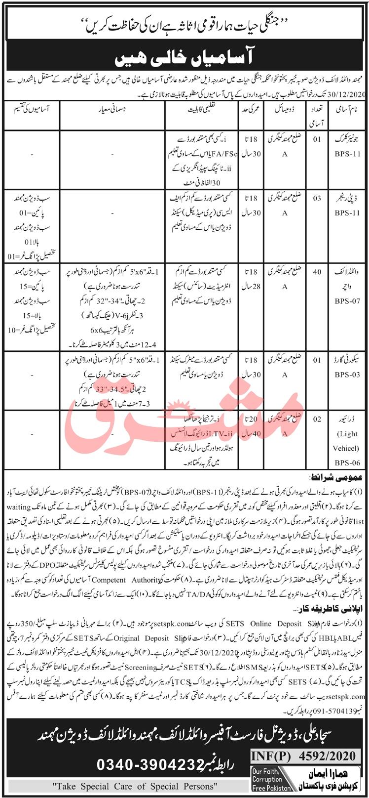Jobs in Wildlife Department KPK, Download SETS Application Form